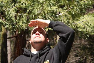 Yosemite 045fff