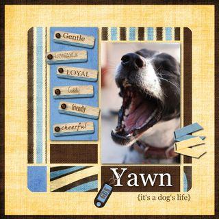 Yawnmini