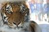 Zookeepercamp_074