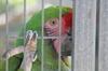 Zookeepercamp_170