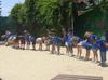Zookeepercamp_673