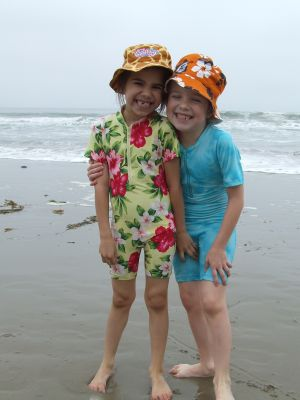 "The image ""http://lisashouse.typepad.com/photos/beachjouneys/beach6.jpg"" cannot be displayed, because it contains errors."